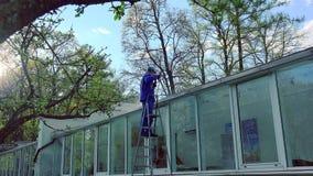 Парень работника в равномерном моя стеклянном доме с высоким давлением акции видеоматериалы
