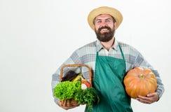 Парень фермера снести большую тыкву По месту, который выросли еда Местная ферма Занятие образа жизни фермера профессиональное Обр стоковое изображение