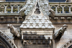 Париж - горгульи на стене Норт-Сайд собора Нотр-Дам Стоковое Изображение