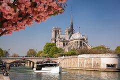 Париж, собор Нотр-Дам с шлюпкой на Сене, Франции Стоковые Изображения RF
