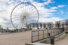 Париж, Франция, 28-ое марта 2017: Колесо Ferris - взгляд от des Tuileries Jardin Гигантское колесо Ferris большое Roue установлен Стоковое Изображение RF