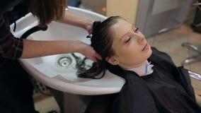 Парикмахер моет волосы ` s девушки в парикмахерскае акции видеоматериалы