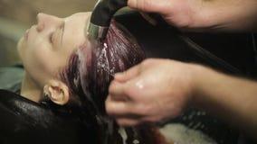 Парикмахер моет голову женщины акции видеоматериалы