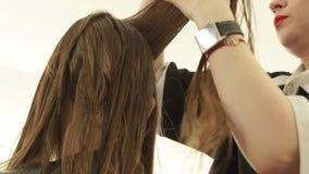 Парикмахер расчесывая волосы стренги перед резать в салоне парикмахерских услуг Закройте вверх по парикмахеру делая женскую стриж видеоматериал