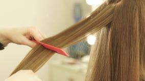 Парикмахер расчесывая длинные волосы и выправляя с схватами волос в салоне парикмахерских услуг Закройте вверх по женскому парикм сток-видео