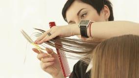 Парикмахер режа женские волосы с ножницами в салоне парикмахерских услуг Закройте вверх по парикмахеру делая женскую стрижку с сток-видео