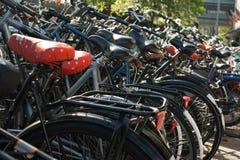 Парковать велосипедов стоковые изображения