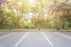 Парковка автомобиля публично парк окружая деревом Стоковые Изображения