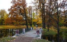 Парк Александра в Tsarskoe Selo, мосте и пруде Стоковые Фотографии RF