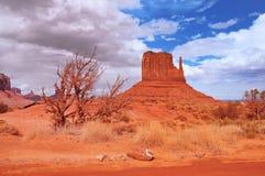 Долина памятника после дождя Стоковая Фотография