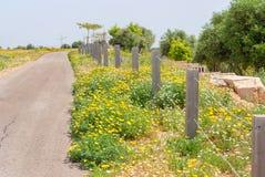 Парк Ариэль Шарона, Израиль стоковое фото