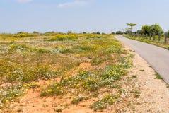 Парк Ариэль Шарона, Израиль стоковое фото rf