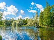 парк бронзового озера мебели старый Стоковые Фото