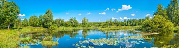 парк бронзового озера мебели старый Стоковое Изображение