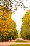 Парк Брюсселя Стоковое Изображение