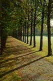 парк бульвара осени Стоковое Изображение RF