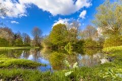 Парк весеннего времени экологический стоковое фото rf