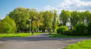 Парк весной стоковые изображения