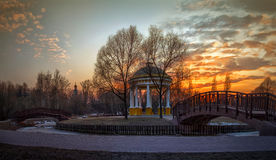Парк весны на заходе солнца Стоковые Фото
