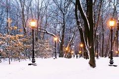 Парк вечера Стоковое фото RF