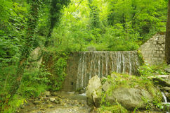 Парк водопада Стоковые Изображения