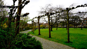 Парк в Брюгге Стоковая Фотография