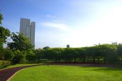Парк в городе Стоковое Изображение