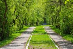 Парк в городе Стоковые Фотографии RF