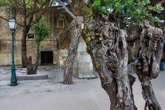 Парк в замке Джордж Sao, Лиссабоне стоковые изображения rf
