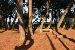 Парк в зеленом цвете Стоковые Изображения RF