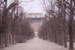 Парк в зимнем времени стоковая фотография rf