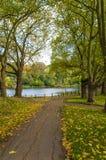 Парк в осени Стоковое Фото
