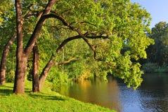 Парк в сентябре Стоковые Изображения RF