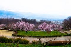Парк в Kofu Стоковое Изображение RF