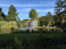 Парк в Utrecht Стоковое Фото