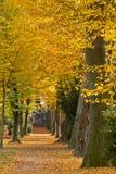 парк Германии karlsruhe осени Стоковая Фотография