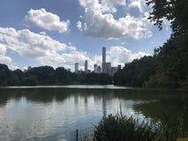 Парк города в Нью-Йорке стоковые изображения