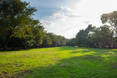 Парк города на парке Vachira Benchathat & x28; Ситовина Fai Park& x29; Стоковая Фотография