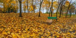 Парк города осени с чуть-чуть деревьями, упаденными листьями и стендом для остатков на краю пути Стоковое Изображение