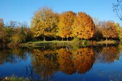 парк города осени Стоковая Фотография