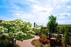 парк города стоковая фотография rf