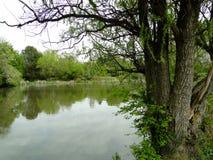 Парк города в Boise, Айдахо Стоковое Изображение RF