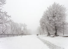 Парк города зимы Стоковое Фото