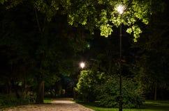 Парк города на ноче Стоковая Фотография