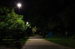 Парк города на ноче Стоковое фото RF