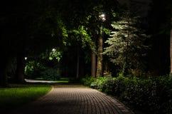 Парк города на ноче Стоковые Фотографии RF
