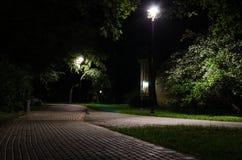 Парк города на ноче Стоковые Изображения RF