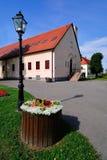 Парк города с зданием администрации города стоковая фотография rf