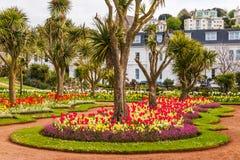 Парк города с экзотическими деревьями и сериями цвета цветет, wonderf Стоковые Фотографии RF