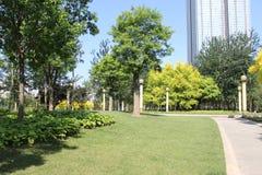 Парк города Тяньцзиня стоковое фото rf
